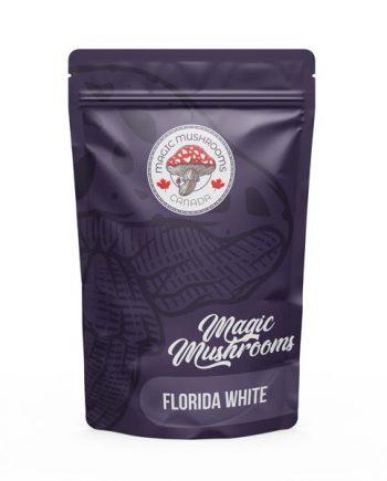 Magic Mushrooms Canada Florida White