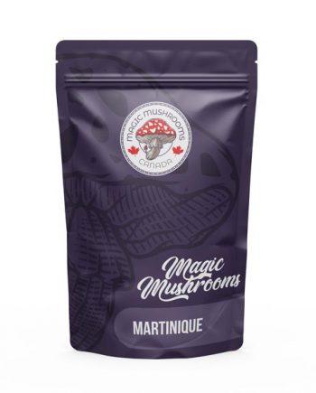 Magic Mushrooms Canada Martinique