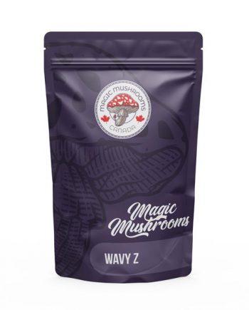 Magic Mushrooms Canada Wavy Z