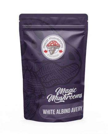 Magic Mushrooms Canada White Albino Avery